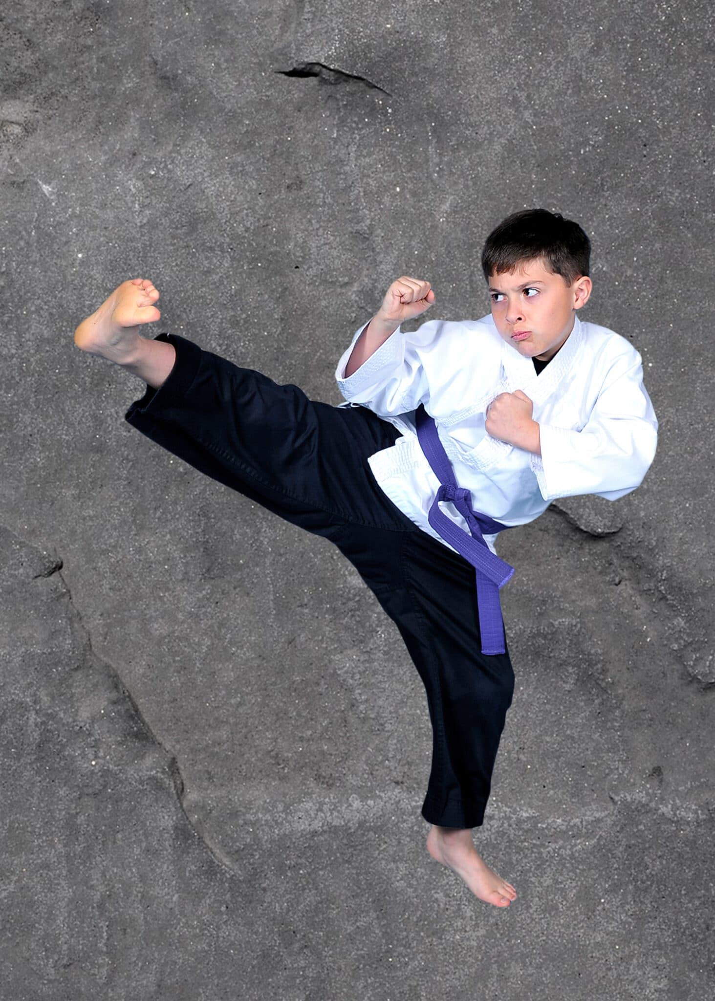 Rick Hall's Tiger Martial Arts Programs image